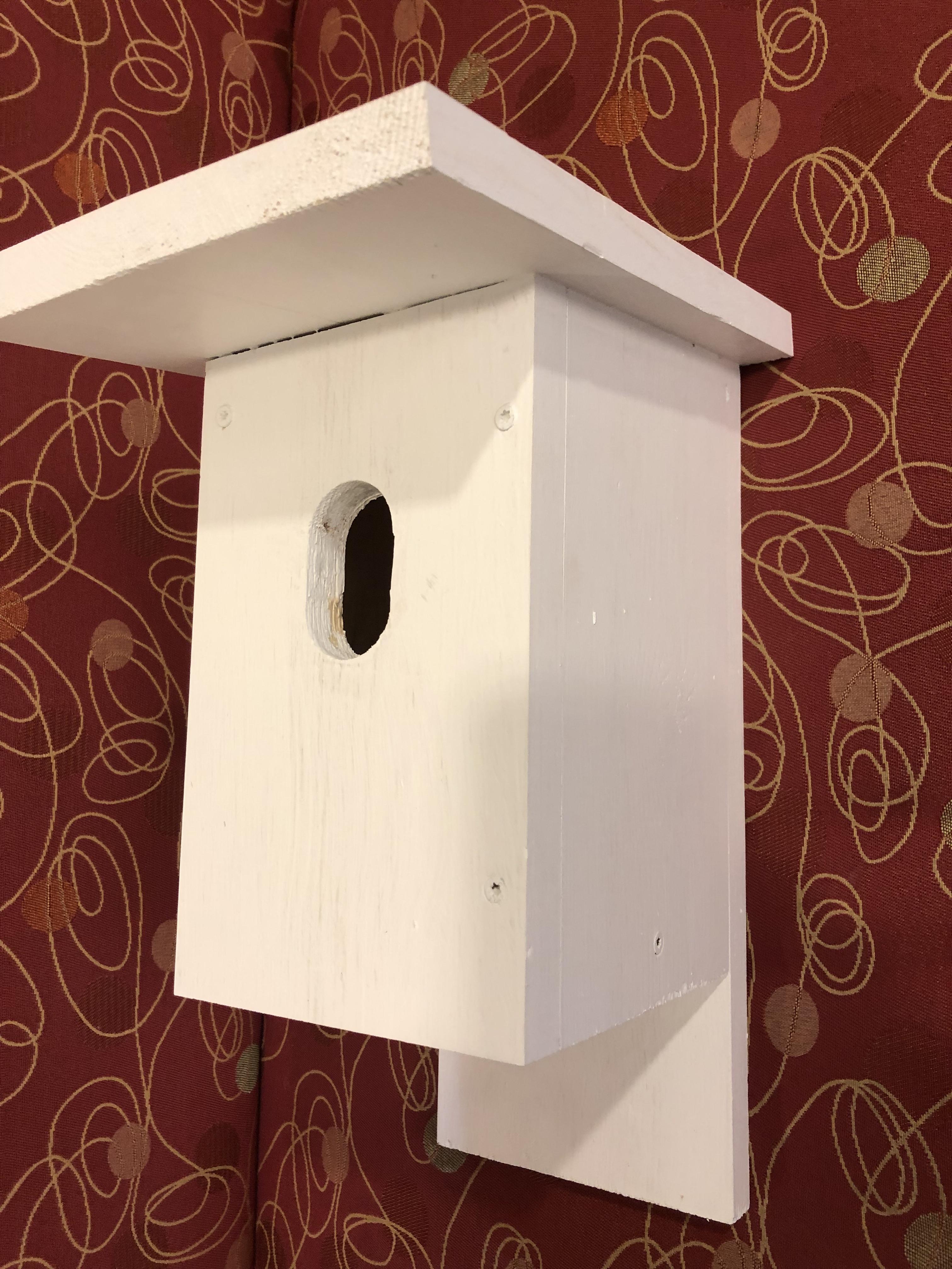 Build a bluebird nest box Apr 27