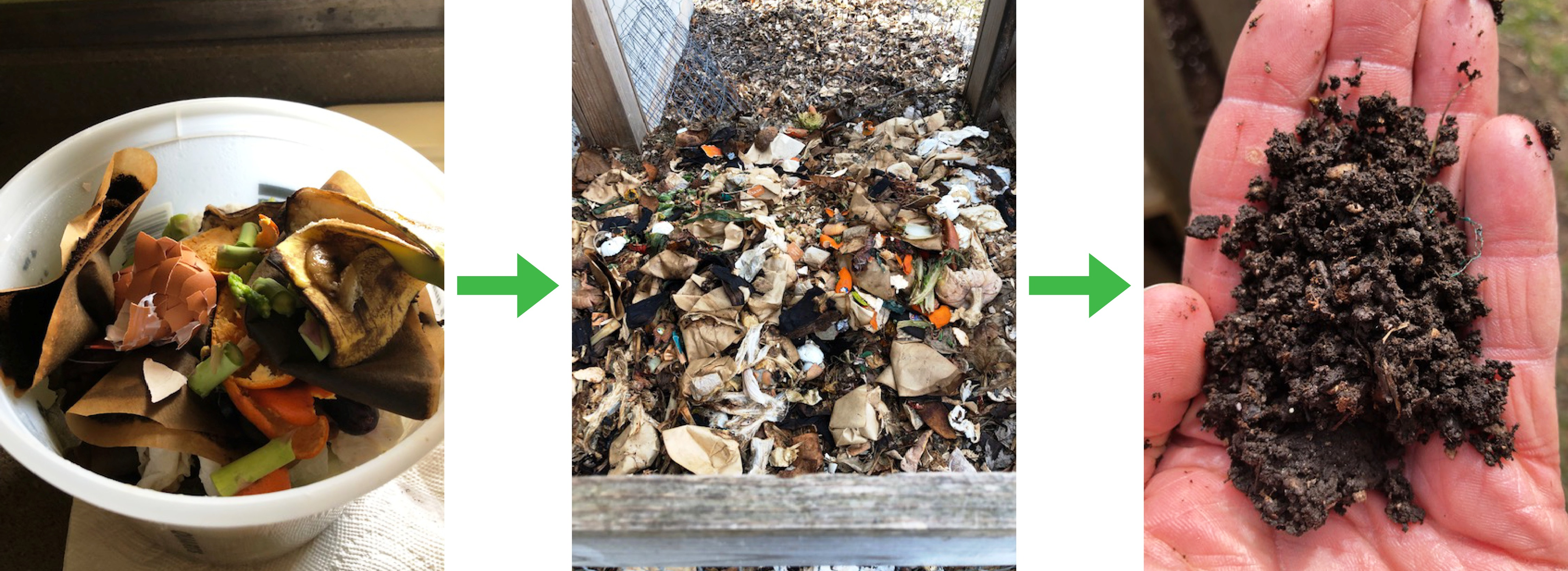 Learn to Compost: From Kitchen to Garden